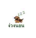 Cute Dog Balloon(個別スタンプ:5)
