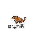 Cute Dog Balloon(個別スタンプ:16)