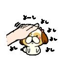 シーズー5(※ここ気持ちいいの?)(個別スタンプ:14)