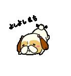 シーズー5(※ここ気持ちいいの?)(個別スタンプ:17)