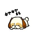 シーズー5(※ここ気持ちいいの?)(個別スタンプ:18)