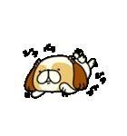 シーズー5(※ここ気持ちいいの?)(個別スタンプ:19)