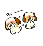 シーズー5(※ここ気持ちいいの?)(個別スタンプ:28)