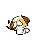 シーズー5(※ここ気持ちいいの?)(個別スタンプ:33)