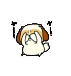 シーズー5(※ここ気持ちいいの?)(個別スタンプ:37)