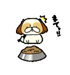 シーズー6(※でちゃった?)(個別スタンプ:08)