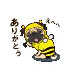 気軽にスタンプ パグ 行動編(個別スタンプ:01)