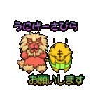 腹巻きぬこ。(沖縄)(個別スタンプ:8)