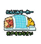 腹巻きぬこ。(沖縄)(個別スタンプ:18)
