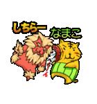 腹巻きぬこ。(沖縄)(個別スタンプ:29)