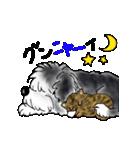 猫時々犬(個別スタンプ:02)