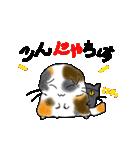 猫時々犬(個別スタンプ:04)