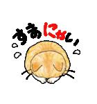 猫時々犬(個別スタンプ:07)