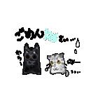 猫時々犬(個別スタンプ:08)