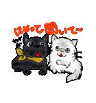 猫時々犬(個別スタンプ:10)