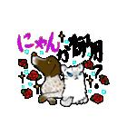 猫時々犬(個別スタンプ:12)