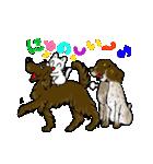 猫時々犬(個別スタンプ:15)