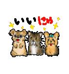 猫時々犬(個別スタンプ:18)