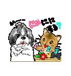 猫時々犬(個別スタンプ:28)