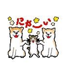 猫時々犬(個別スタンプ:32)