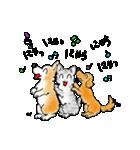 猫時々犬(個別スタンプ:36)