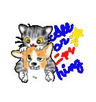 猫時々犬(個別スタンプ:38)