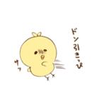 ぴよきち!(個別スタンプ:03)