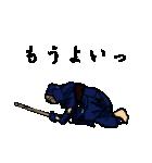 剣の刻~侍~(個別スタンプ:38)