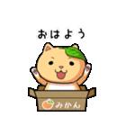 ぽっちゃりたれ耳ミカンネコ(個別スタンプ:01)
