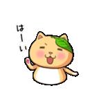 ぽっちゃりたれ耳ミカンネコ(個別スタンプ:03)
