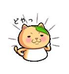 ぽっちゃりたれ耳ミカンネコ(個別スタンプ:09)
