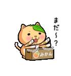 ぽっちゃりたれ耳ミカンネコ(個別スタンプ:15)