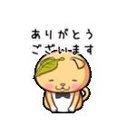 ぽっちゃりたれ耳ミカンネコ(個別スタンプ:28)