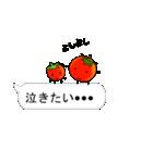 吹き出しの上にミニトマトがいる(個別スタンプ:03)