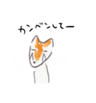 なかよし2ひき Poteto&Dan(個別スタンプ:10)