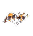 なかよし2ひき Poteto&Dan(個別スタンプ:38)