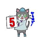 Hiroshima Cat 5 夏(個別スタンプ:30)