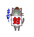 Hiroshima Cat 5 夏(個別スタンプ:36)