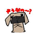パグ犬2(個別スタンプ:7)