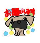 パグ犬2(個別スタンプ:13)