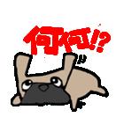 パグ犬2(個別スタンプ:30)