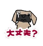 パグ犬2(個別スタンプ:32)