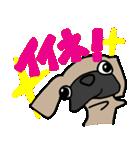 パグ犬2(個別スタンプ:37)