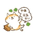 柴ちん2 柴犬とおしゃべり(個別スタンプ:01)