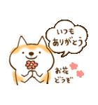 柴ちん2 柴犬とおしゃべり(個別スタンプ:18)