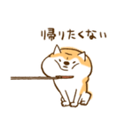 柴ちん2 柴犬とおしゃべり(個別スタンプ:22)