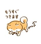 柴ちん2 柴犬とおしゃべり(個別スタンプ:25)