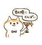 柴ちん2 柴犬とおしゃべり(個別スタンプ:34)