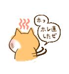 柴ちん2 柴犬とおしゃべり(個別スタンプ:35)