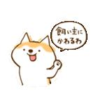 柴ちん2 柴犬とおしゃべり(個別スタンプ:40)